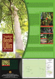 Poster Tegakan Benih Ulin di KHDTK Samboja