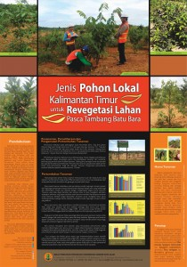 8 Poster Jenis Pohon Lokal Kalimantan Timur untuk Revegetasi Lahan Pasca Tambang Batu Bara